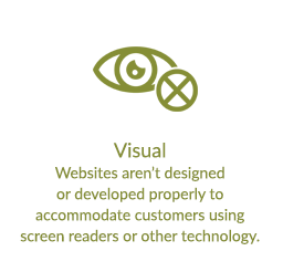 Visual - Websites aren't designed or developed properly to accommodate customers using screen readers or other technology.